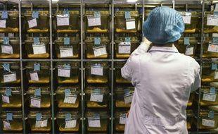 Un laboratoire de recherche sur le virus du Sida en Chine (image d'illustration).