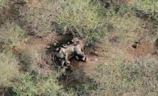 Photographie aérienne transmise par la Société de protection de la faune WCS montrant une carcasse d'éléphant victime de braconniers dans un parc national au Soudan du Sud, le 10 juillet 2015
