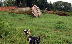 Les parties civiles s'inquiètent de blocages dans l'enquête française sur l'attentat contre l'avion du président rwandais Juvenal Habyarimana en 1994, notamment après le meurtre à Johannesburg d'un ancien chef des services secrets rwandais que les enquêteurs voulaient entendre comme témoin.
