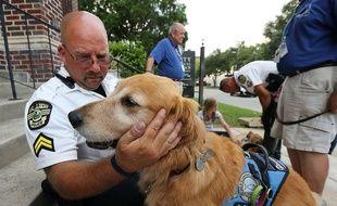 Depuis ce dimanche 12 juin 2016, les chiens de confort soutiennent les victimes traumatisées de la tuerie d'Orlando, aux Etats-Unis.