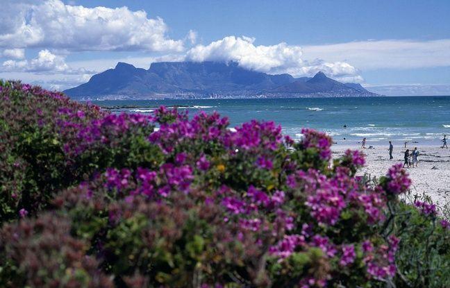 Vue sur la ville du Cap et Table mountain, en Afrique du Sud.