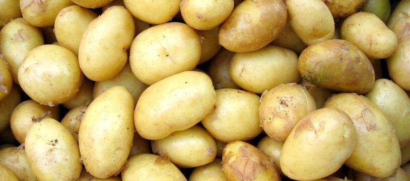 Les pommes de terre ont une mauvaise réputation. Pourtant, bien apprêtées, elles recèlent des bienfaits pour la santé