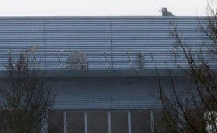 Un tireur d'élite des forces spéciale française sur le toit de l'entreprise où se trouve les frères Kouachi, le 9 janvier 2015.