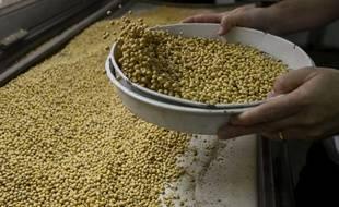 Des graines de soja triées dans une usine de Santa Fe, en Argentine, le 13 septembre 2017.