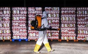 Un employé désinfecte un entrepôt à Curitiba au Brésil.