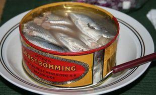 Une boîte de hareng fermenté surströmming, le poisson le plus pestilentiel au monde.