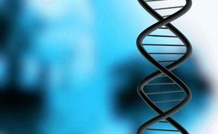 Illustration d'un brin d'ADN (acide désoxyribonucléique), la molécule qui porte l'information génétique des êtres vivants.