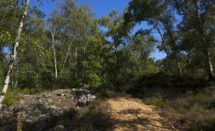 La forêt de la Barre ouvre ce samedi au public.