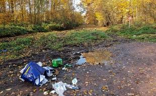 Un dépôt sauvage de déchets en lisière de forêt à Raismes.