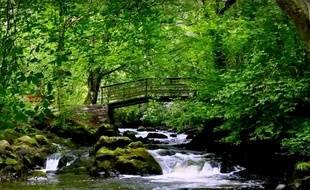 Cascade irlandaise