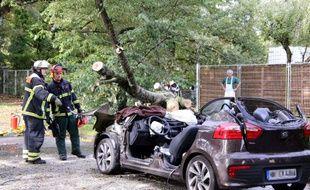 LA tempête Xavier a fait 7 morts en Allemagne