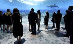 L'Ocean Odyssey, musée du National Geographic sans animaux inspire Norbert Fradin pour son projet d'aquarium bordelais.