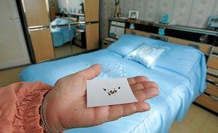 L'été dernier, des centaines de foyers marseillais ont été envahis par des punaises de lit