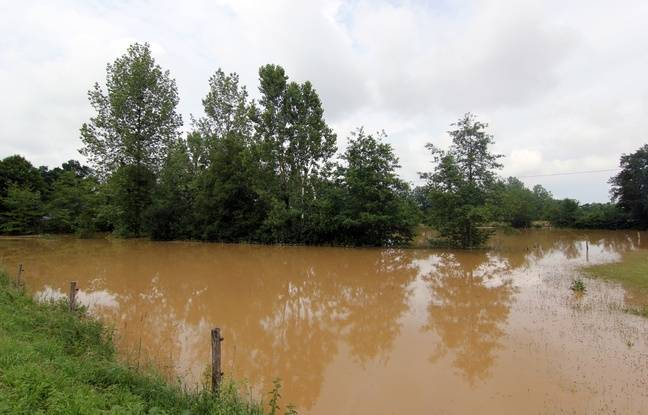 VIDEO. Ille-et-Vilaine: Deux mois de pluie attendus en 24 heures, les cours d'eau sous surveillance