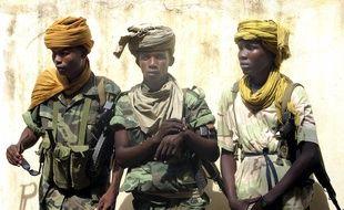Dans des rapports en 2007, 2009 et 2010 concernant les enfants et les conflits armés, les Nations Unies avaient relevé la présence de mineurs dans des groupes armés au Tchad.