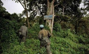 Le rythme de la déforestation s'est accéléré sur la planète depuis l'an 2000, avec la perte de 6,4 millions d'hectares par an, a déploré dans un rapport paru mercredi la FAO, l'Organisation des Nations Unies pour l'Agriculture et l'Alimentation.