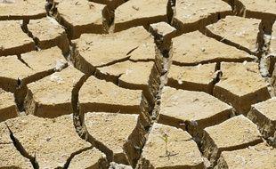 Quand la température moyenne mondiale augmente de plus de deux degrés Celsius, notre société franchira un point de non retour.