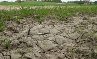 Illustration de la sécheresse (Archives