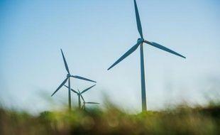 L'éolien représente désormais 21% de la production électrique régionale