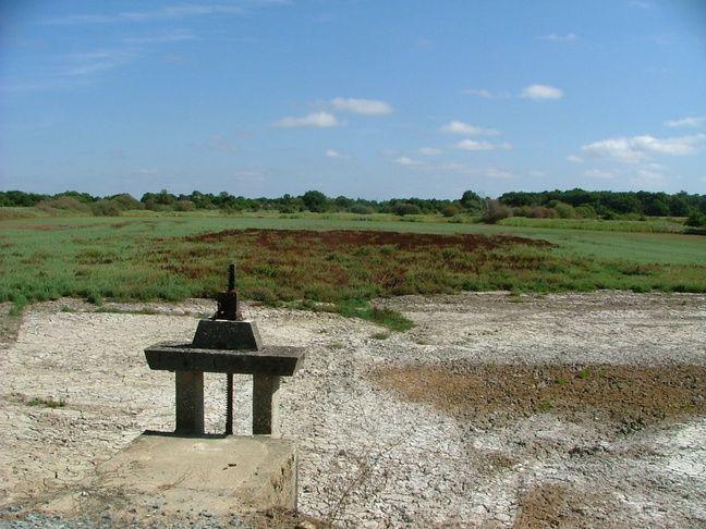 Des étangs dans la région sont complètement vides.