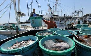 Des pêcheurs à Kitaibaraki, dans la préfecture d'Ibaraki, à une centaine de kilomètres au sud de Fukushima, le 6 avril 2011