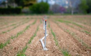 Illustration sur l'agriculture , la scheresse et l'irrigation