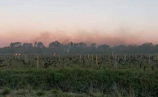Des opérations pour réchauffer les vignes ont été menées, face à l'épisode de gel qui a touché la Gironde