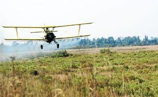 L'EID Méditerranée ne dispose plus que d'un seul insecticide pour les larves