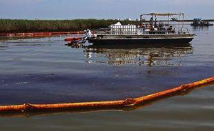 Des salariés de BP tentent de retirer le pétrole du bayou de Pass a Loutre, près de Venice, en Louisiane, le 1er juin 2010.