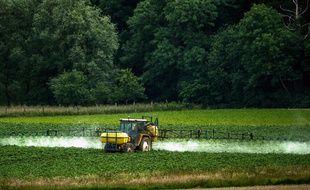 Un agriculteur répand un herbicide dans son champs le 15 juin 2015.
