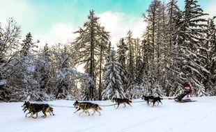 25 mushers participeront, du 12 au 23 janvier, à la Grande Odyssée entre Savoie et Haute-Savoie.