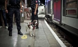 Gare RER de Saint-Michel - Notre-Dame (SNCF), présentation et démonstration d'une brigade cynophile de la Sûreté Ferroviaire (SNCF-STIF), spécialisée dans la détection d'explosifs, avec la chienne Lina. (photo d'illustration)