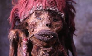 La momie du parc zoologique pairi Daiza.