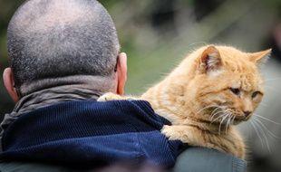 Des patients de l'institut de victimologie suivent un programme de thérapie avec des animaux du refuge Ava