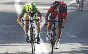 Greg van Avermaet (D) et Peter Sagan (G) lors de l'arrivée de la 13e étape du Tour de France 2015 à Rodez