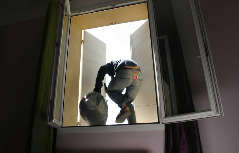 """Résultat de recherche d'images pour """"Nez à nez avec les  voleurs"""""""
