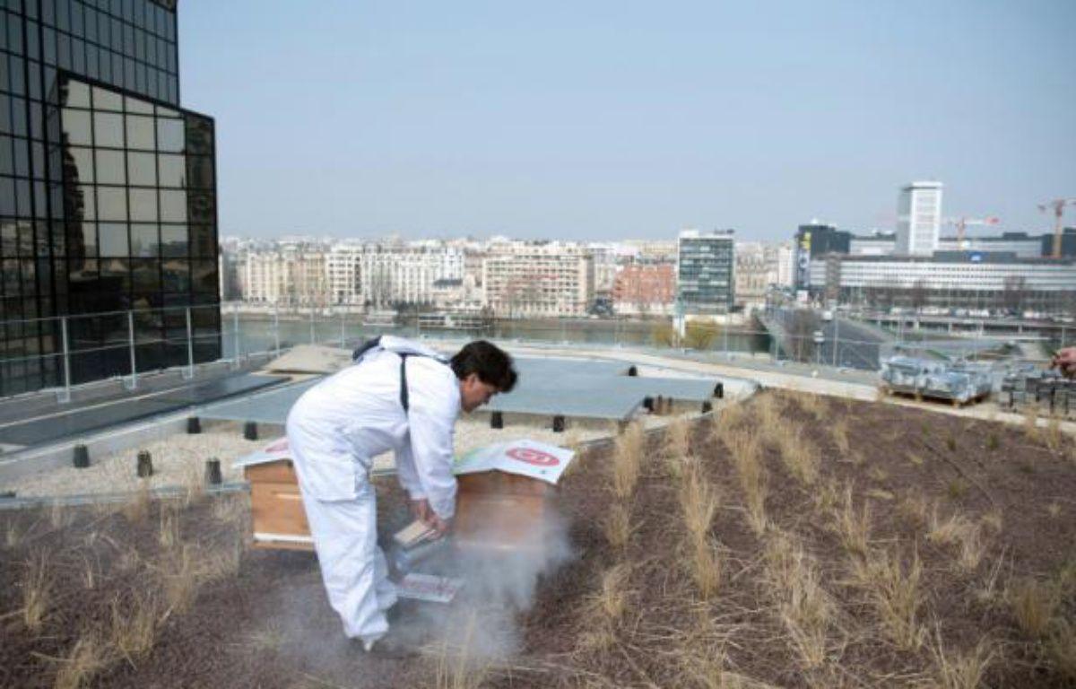 Un apiculteur s'occupe de ses ruches sur le toit végétalisé du centre Beaugrenelle à Paris le le 4 avril 2013 – MARTIN BUREAU AFP