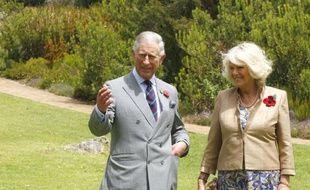 Le prince Charles a plaidé samedi en faveur de la défense de la planète au cours de son voyage en Afrique du Sud où il a également lancé un appel pour sauver les ressources naturelles.