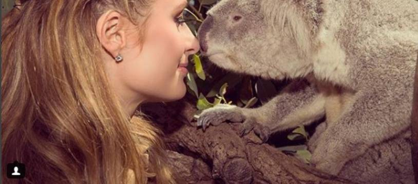 Paris Hilton et un koala, sur Instagram.