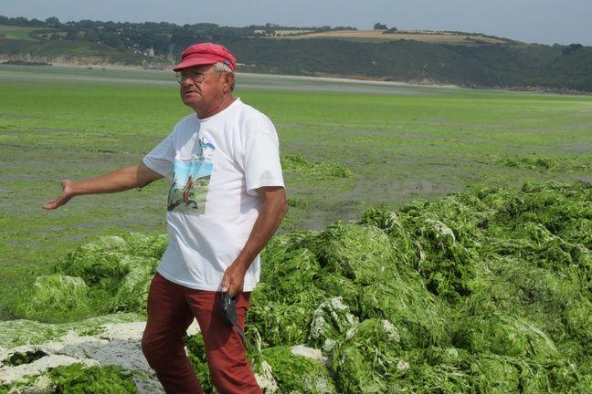 André Ollivro, président de l'association Halte aux marées vertes, sur la plage de Bon-Abri, à Hillion, où s'entassent d'impressionnants amas d'algues vertes.