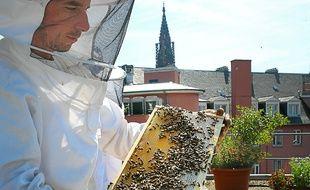 Strasbourg le 03 07 2014. Six ruches se trouvent sur le toit des Galeries Lafayette. Thierry Colin apiculteur recueille 35 kilos de miel par recolte en moyenne. Soit quasiment le double d'une ruche equivalente en campagne.Une troisieme recolte est prevue fin aout