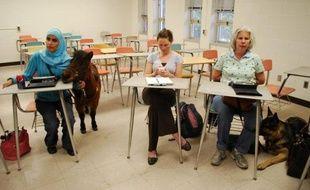 Mona Ramouni était en train de prendre des notes en braille lorsque Cali a décidé d'intervenir par un hennissement. Rien d'anormal dans cette université américaine où la jeune fille étudie, accompagnée de son poney guide d'aveugle.
