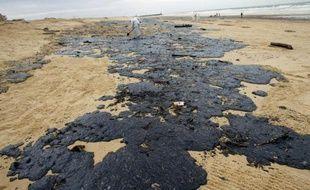 """Le """"graphène blanc"""", un nouveau matériau, souverain contre la marée noire? C'est ce qu'affirment des chercheurs qui ont testé les propriétés dépolluantes du nitrure de bore, capable d'absorber 33 fois son poids en pétrole ou solvants organiques tout en flottant à la surface de l'eau."""