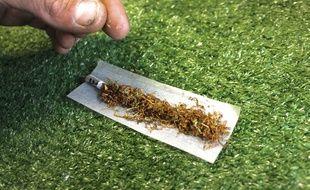 Un individu prépare un joint de cannabis.