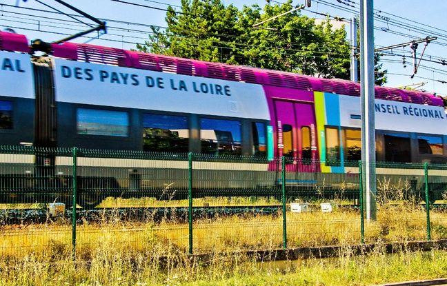 La Cour des comptes pointe l'impréparation des régions et de la SNCF à l'ouverture à la concurrence des TER