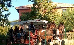 La mairie de Saint-Selve (Gironde) a mis en place un ramassage scolaire en hippobus