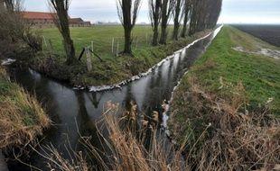 Les wateringues, ensemble d'ouvrages permettant de rejeter les eaux pluviales vers la mer, dans la zone des polders à Les Moëres près de Dunkerque (Nord), le 27 janvier 2010