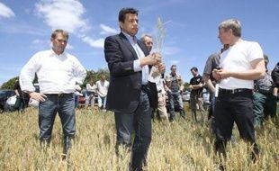 """Sept candidats à l'Elysée, dont les deux favoris, François Hollande et Nicolas Sarkozy, sont attendus jeudi à Montpellier à l'invitation du monde rural pour exposer leurs propositions sur ce secteur """"stratégique"""" pour la France."""