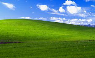 Le fond d'écran par défaut de Windows XP.