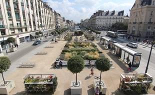 A Rennes, le sujet de la nature en ville s'est imposé comme l'un des thèmes majeurs de l'élection.